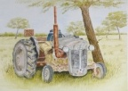 Out to Pasture  -  Watercolour