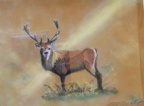 The Stag  Oil