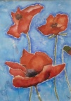 Poppies Blue  -  Watercolour