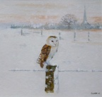 Barn Owl - Watercolour